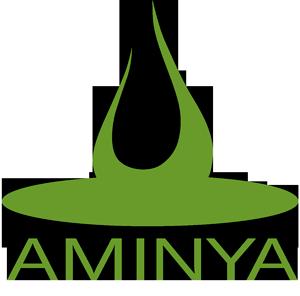 Aminya logo